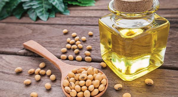 soybean_market87