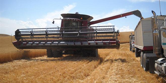 2010-harvest-HP-020-Large
