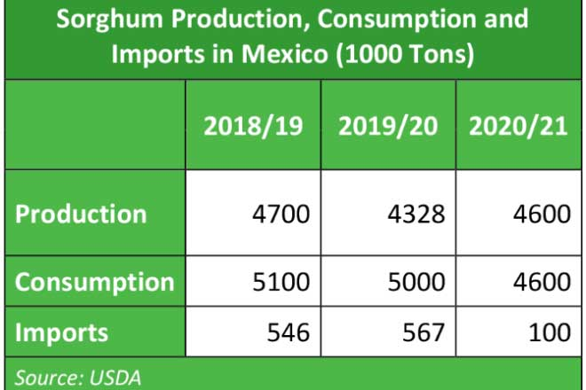 Mexico's rice production