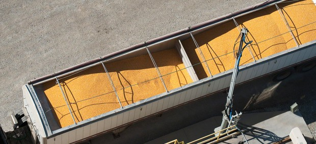 soybean processing plant